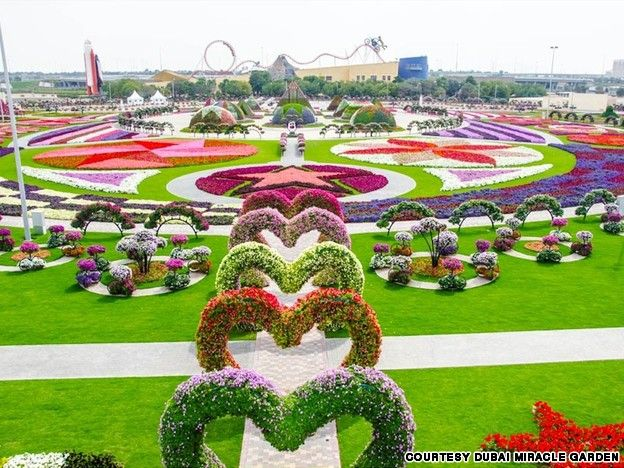 Dubai Miracle Garden - Image found on travel.cnn.com